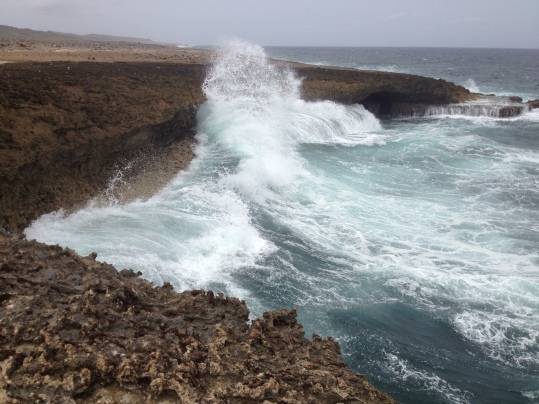 Photo Reference for Wave in Curacao